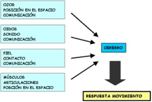 TRATAMIENTO POSTURAL DOMICILIARIO EN EL ACV CONSEJOS PARA EL CUIDADOR